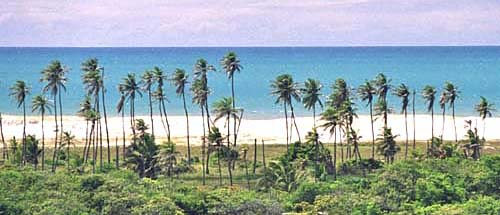 View from the main road Porto das Dunas Ceara Brazil