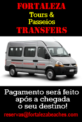 Transfers Tours Van Executiva