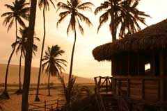 the jericoacoara beach