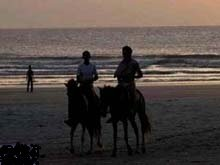 horseback riding on praia do presidio