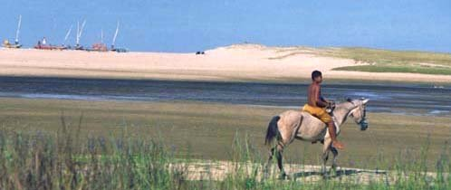 Horseback on the beach Porto das Dunas Fortaleza